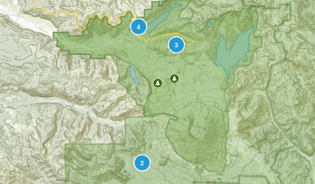 Toutle, Washington Walking Map