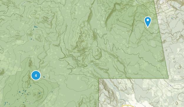 Trout Lake, Washington Forest Map