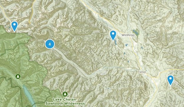 Twisp, Washington Dogs On Leash Map