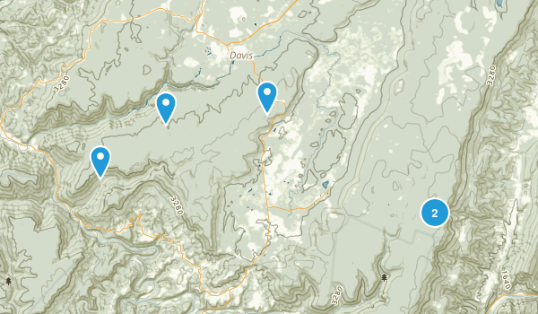Davis, West Virginia Birding Map