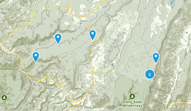 Davis, West Virginia Birding Map
