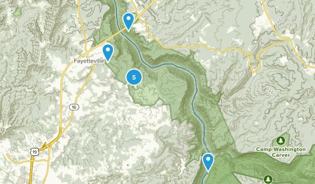 Fayetteville, West Virginia Wild Flowers Map