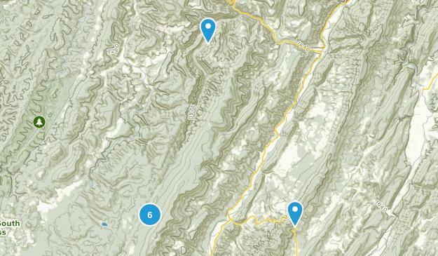 Riverton, West Virginia Forest Map