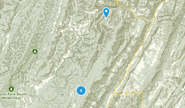 Riverton, West Virginia Wild Flowers Map