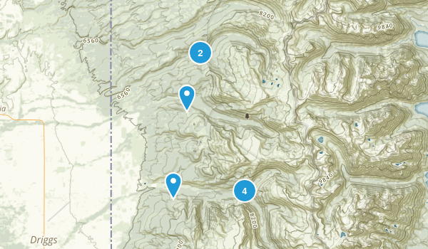 Alta, Wyoming Forest Map
