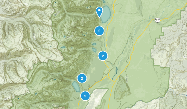 Beaver Creek, Wyoming Forest Map
