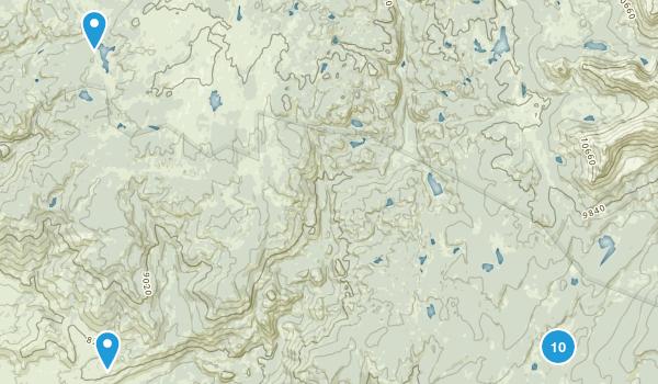 Boulder, Wyoming Dog Friendly Map
