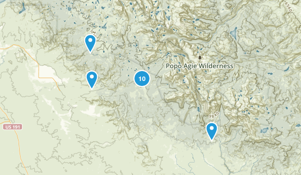 Boulder, Wyoming Forest Map