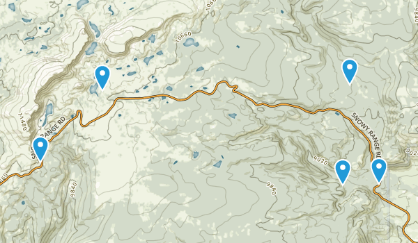 Centennial, Wyoming Forest Map
