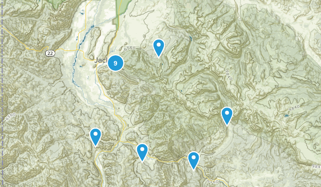 Jackson, Wyoming Dogs On Leash Map