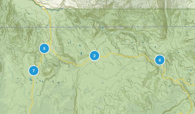 Mammoth, Wyoming Birding Map