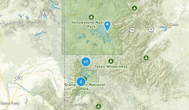 Moran, Wyoming No Dogs Map