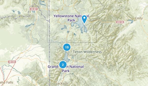 Moran, Wyoming Wild Flowers Map