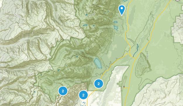 Teton Village, Wyoming No Dogs Map