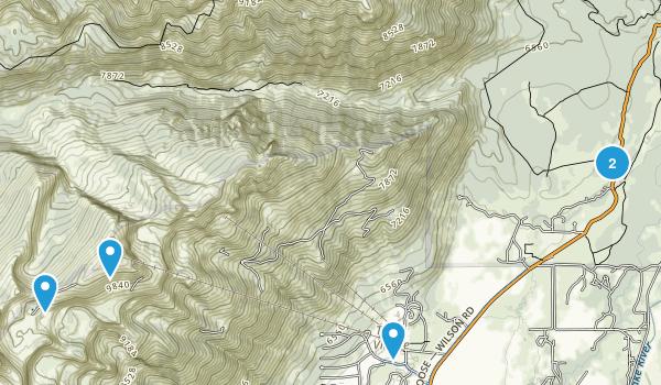 Teton Village, Wyoming Forest Map