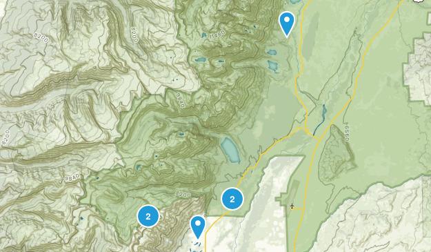 Teton Village, Wyoming Wild Flowers Map