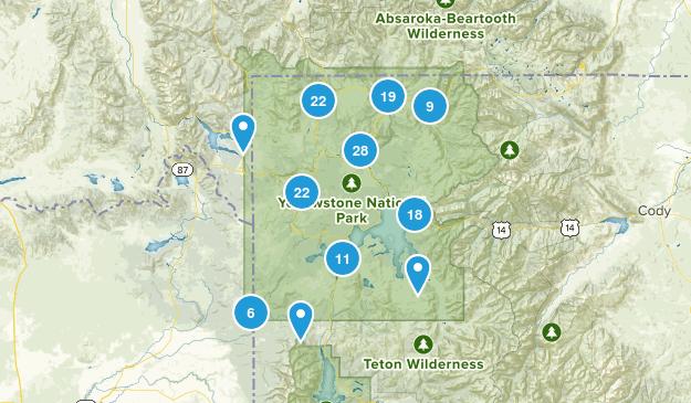 Yellowstone National Park, Wyoming Wildlife Map