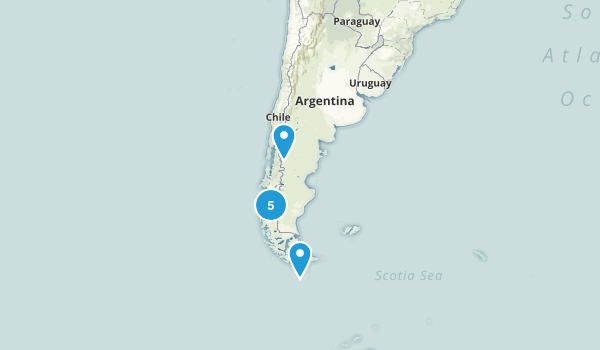 Argentina Forest Map
