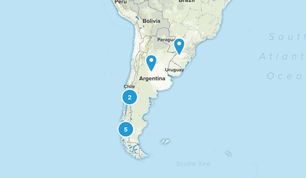 Argentina Wild Flowers Map