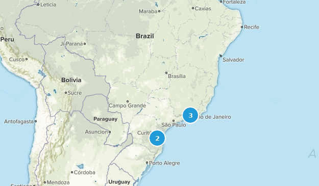 Brazil No Dogs Map
