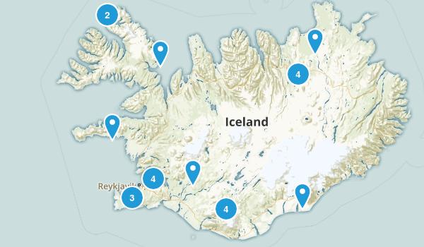 Iceland Wild Flowers Map
