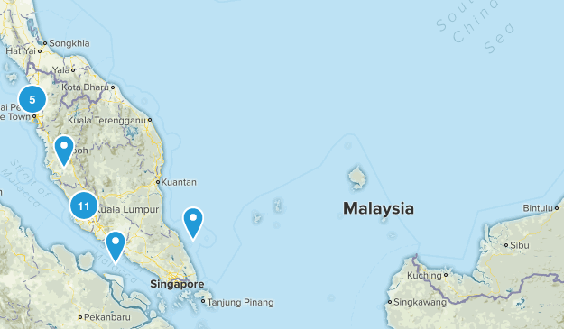Malaysia Forest Map