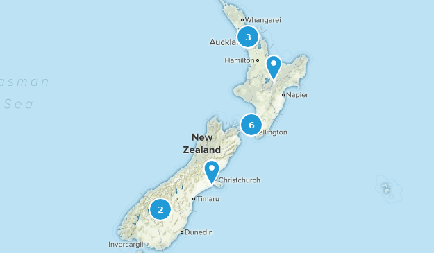 New Zealand Dogs On Leash Map
