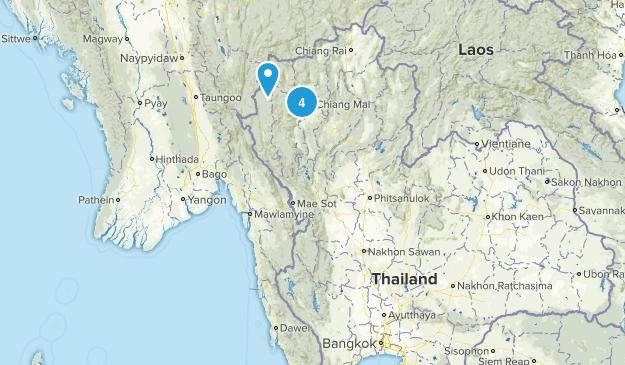Thailand Wild Flowers Map