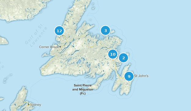 Newfoundland and Labrador, Canada Dogs On Leash Map