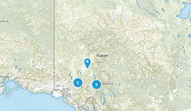 Yukon, Canada Forest Map