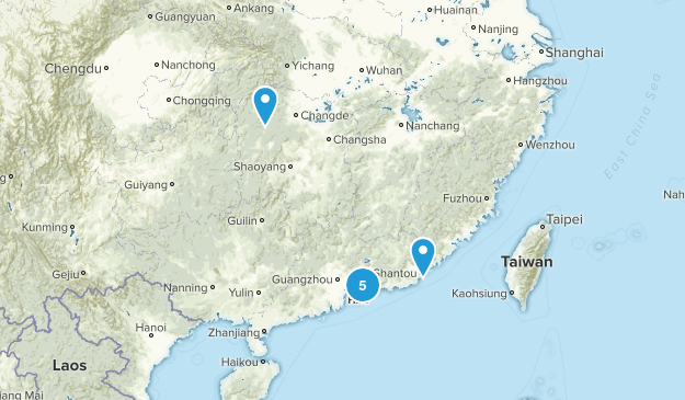 Guangdong, China Forest Map