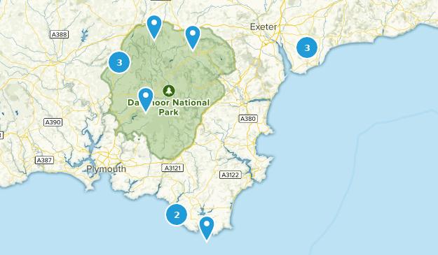 Devon, England Bird Watching Map
