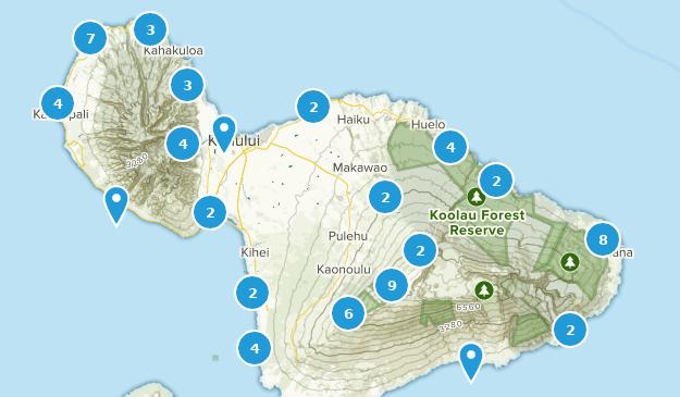 Best Walking Trails in Maui Hawaii | AllTrails on waikiki map, lahaina map, molokai map, reno map, puerto rico map, oahu map, kapalua map, miami map, lihue map, makawao map, kaanapali map, kihei map, hawaii map, pearl harbor map, kauai map, big island map, honolulu map, hawaiian islands map, lanai map, florida map,