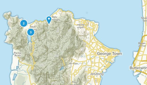 Pulau Pinang, Malaysia Wild Flowers Map