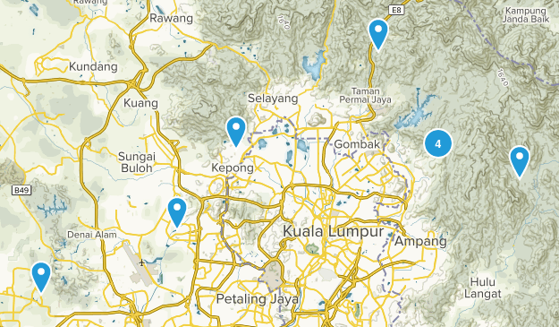 Selangor, Malaysia Forest Map