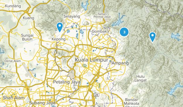 Selangor, Malaysia Wild Flowers Map