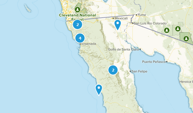 Baja California, Mexico Bird Watching Map