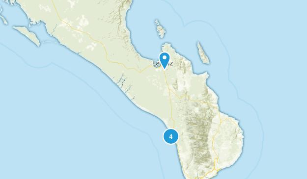 Baja California Sur, Mexico Birding Map