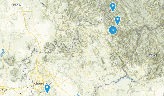Querétaro, Mexico Wild Flowers Map