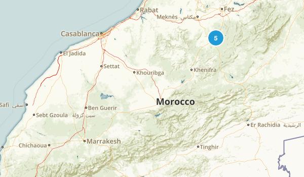 Marrakech - Tensift - Al Haouz, Morocco Wild Flowers Map