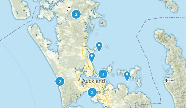 Beste Wege ohne Hunde in Auckland Neuseeland   AllTrails