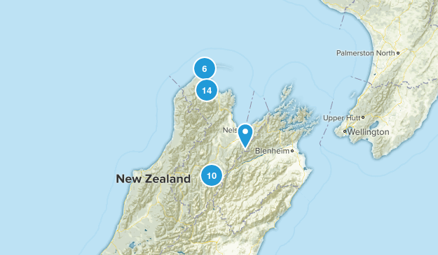 Tasman Region, New Zealand Birding Map