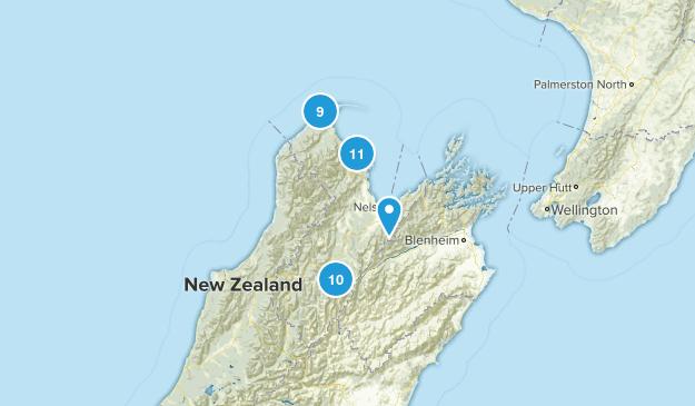 Tasman Region, New Zealand Nature Trips Map