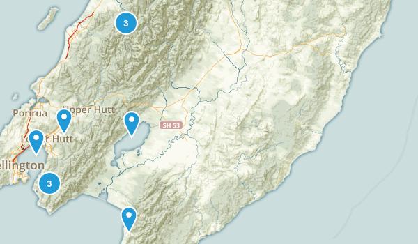 Wellington Region, New Zealand Forest Map