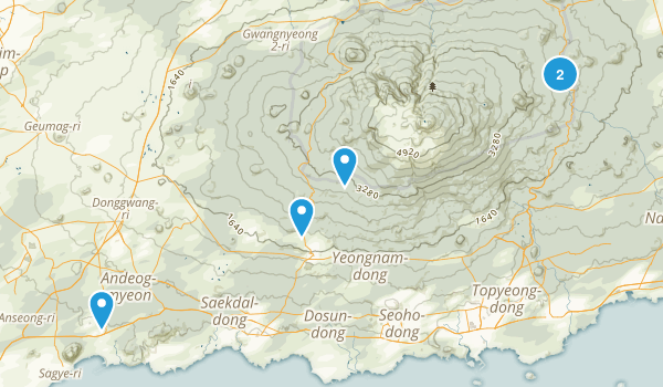 Jeju, South Korea Forest Map