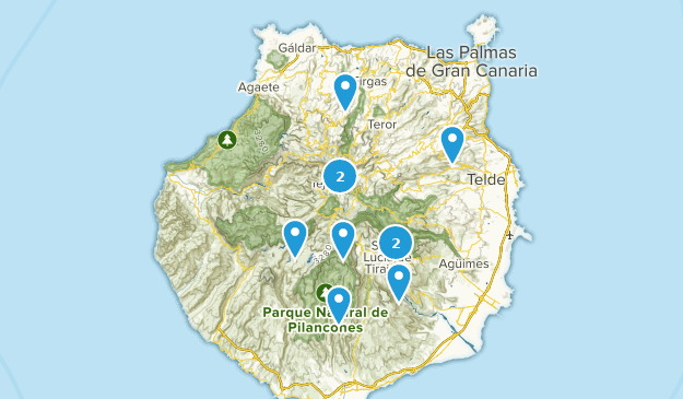 Map Of Spain Gran Canaria.Best Bird Watching Trails In Gran Canaria Spain Alltrails