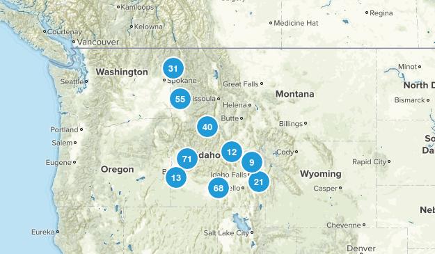 Idaho Wild Flowers Map