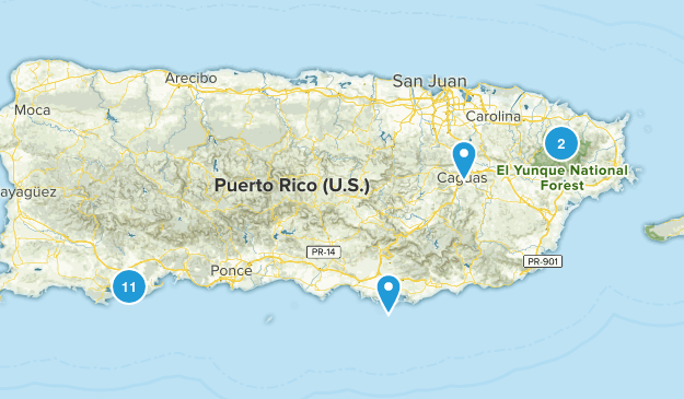Puerto Rico Birding Map
