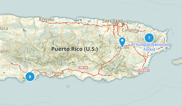 Puerto Rico Forest Map