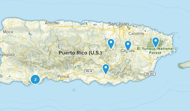 Puerto Rico Wild Flowers Map